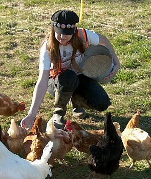 Girl feeding free-range chickens at Norton Creek Farm