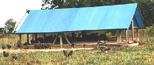 skid shelter